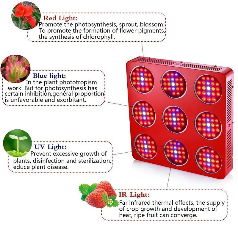 3360w led bitki lambası full Spectrum 12