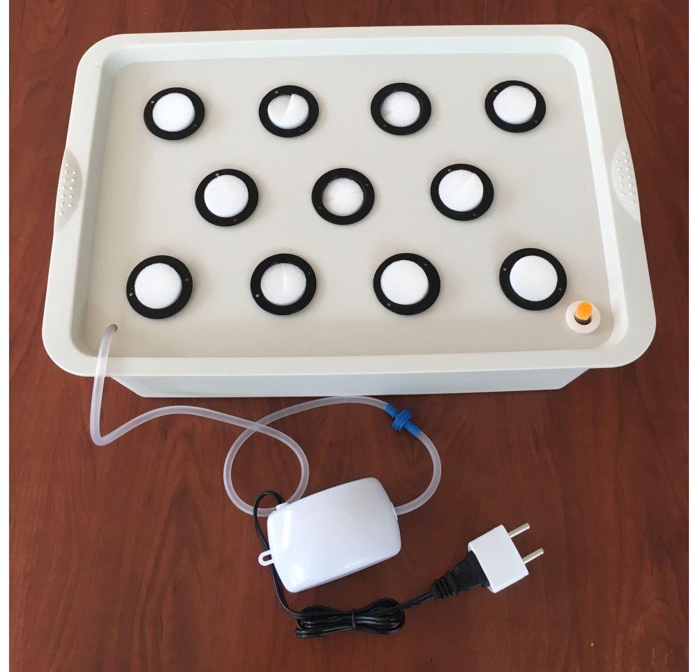 Mini Hidroponik Tarim Sistemi 11 Bitki